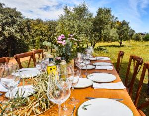 Picknick im Grünen auf mallorquinischer Finca
